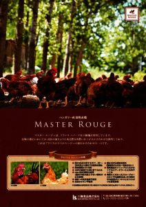 a4_tate_master-rougeのサムネイル